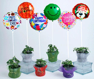 E-Z Balloon Cups E-Z Balloon Sticks Balloon Cups Balloon Sticks Creative Balloons Mfg Inc